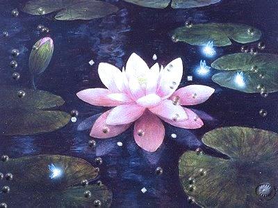 flor_de_lotus3